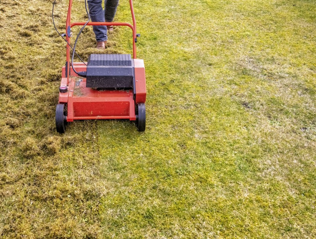 Best-Lawn-Care-in-Dupage-Cook-County